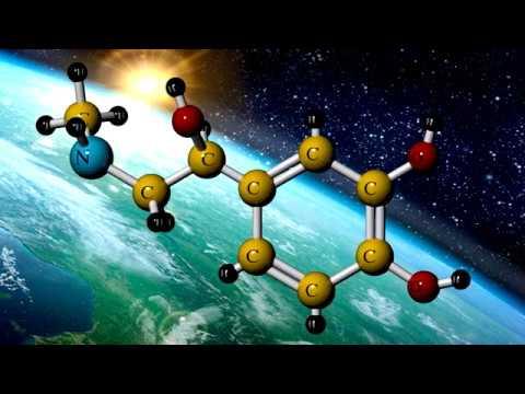 Estructura Molecular Epinefrina átomos Y Moléculas