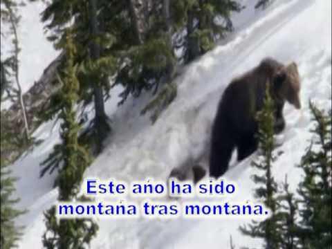 Montaña tras Montaña2