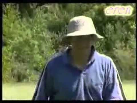 İlginç Golf şakası Haha şaka Komik Video Golfcuya şaka-izle Komik Komik Video Golf şakacı