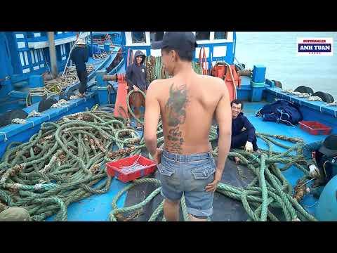 Khám Phá Cặp Tàu Cá 12 Tỷ Của Ngư Dân Quảng Ngãi