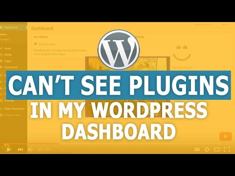 Why Can't I See Plugins in my WordPress Dashboard