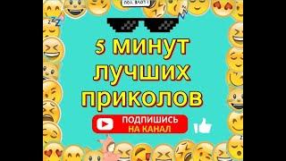 Приколы / Смешные Видео Приколы / #22 / Видео