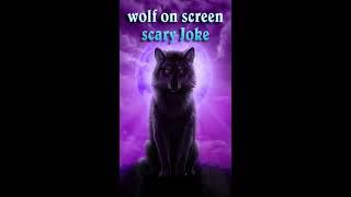 Wild Grey Wolf attack in phone scary joke