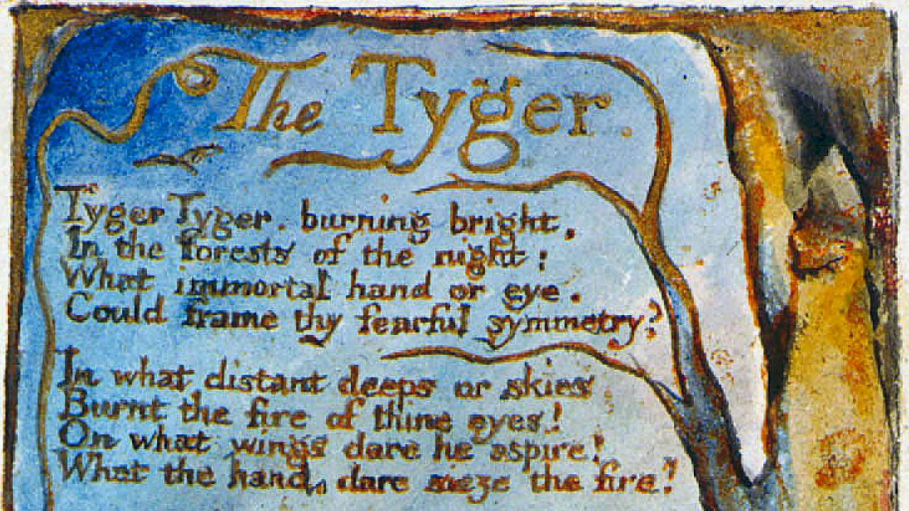 william blake lamb tyger essay