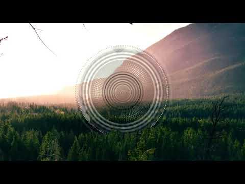 Fec - Camellia [Chrom Recordings]