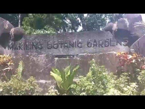 UPLB: Makiling Botanic Gardens and IRRI