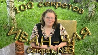 100 секретов иван-чая СЕКРЕТ 3