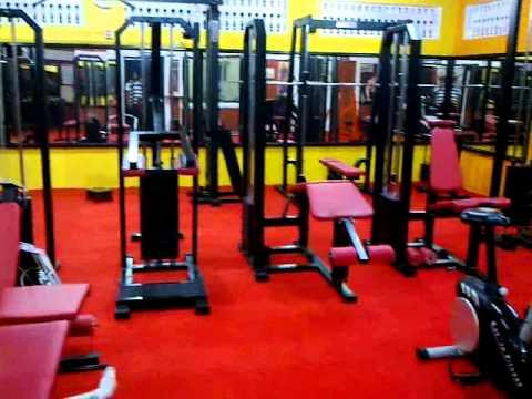 MS Health Club and Multi Gym