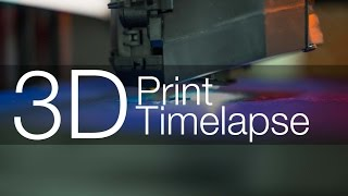 Makerbot Replicator 5th generation timelapse prints