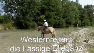Westernreiten Online Kurs