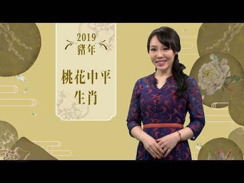 雲文子 | 豬年運程2019!桃花運中平生肖(屬牛、屬馬、屬猴、屬狗)詳解 | ELLE HK