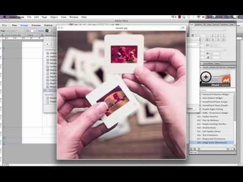 Photo Zoom Widget in Adobe Muse - Tips & Tricks by MuseThemes.com