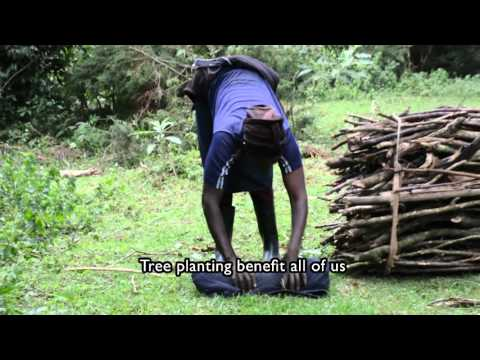 Energy access and food security in sub-Saharan Africa