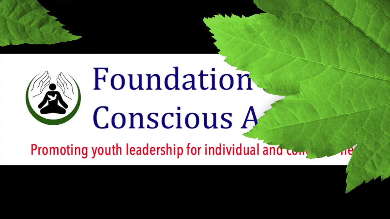 Non-Profit Organization: Foundation For Conscious Activism