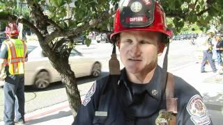 City Watch - Fill the Boot