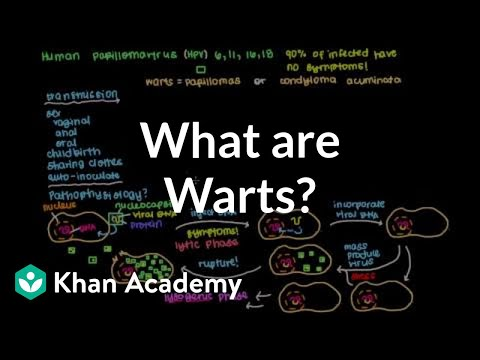 What are warts? | Infectious diseases | NCLEX-RN | Khan Academy