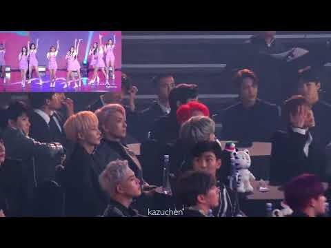 (Asia Artist Awards 2017) Idol - Reaction to MOMOLAND