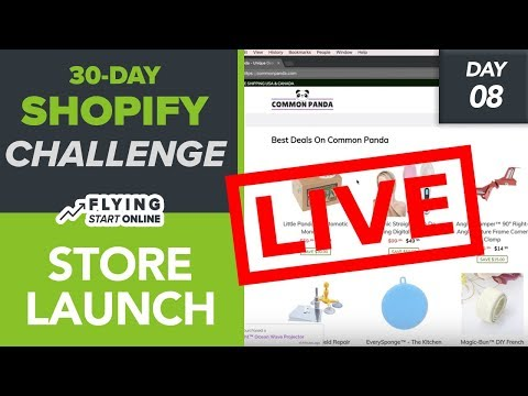 Launching My Shopify Store! Pre-Launch Checklist, Shopify Plan & More - (Day 8/30) #Bizathon3