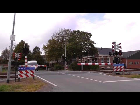 Spoorwegovergang Baflo/ Level Crossing/ Passage a Niveau/ Railroad-/ Bahnübergang