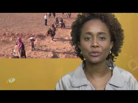 Het 10 Minuten Jeugd Journaal 20 juni 2016 (Suriname / South-America)
