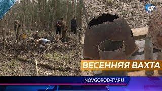 У Новгородській області почалися масштабні пошукові роботи