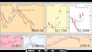 Bitcoin Going to 6000 Prepared? Live Whales  ETH LTC XRP BCH ADA XLM NEO EOS DASH NEM TRON VEN ZRX