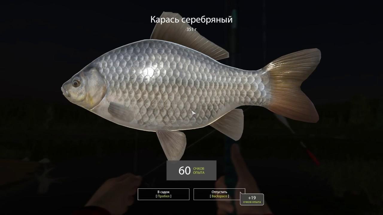 в январе рыбалка на карася