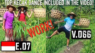 TEGALALANG RICE TERRACE & TOP KECAK DANCE