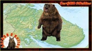 Медведи продолжают проявлять активность в Мурманской области(Без комментариев., 2015-09-01T07:00:08.000Z)