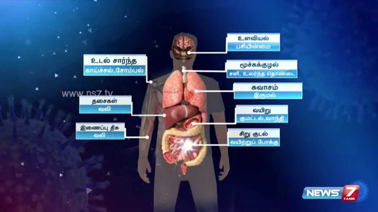 What are the symptoms of swine flu (H1N1)?   News7 Tamil - YouTube