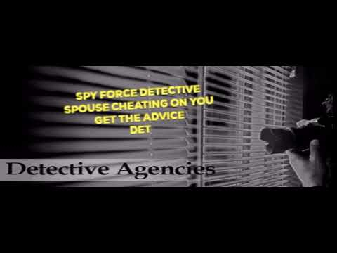 Spy Force Detective : Private Detectives Agency in Jalandhar