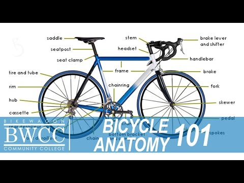 Bicycle Anatomy 101: Learn All the Parts of a Bike