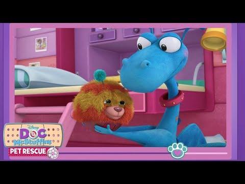 Love Your Pets! | Doc McStuffins Pet Vlog | Disney Junior