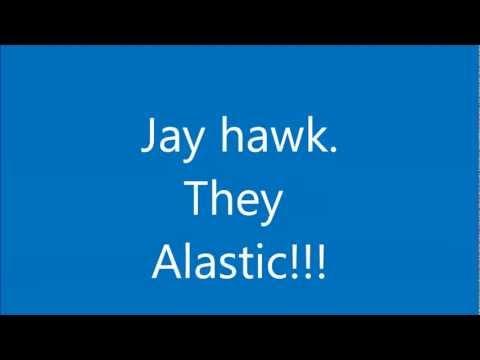 jay hawk they elastic