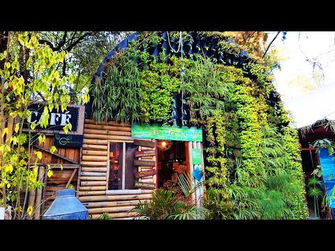 Perfect Permaculture Village In The Heart of Mexico City