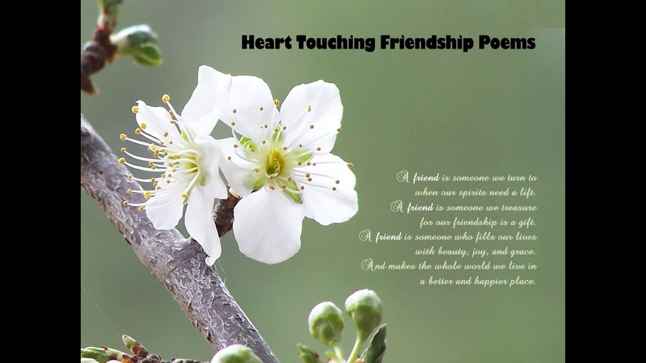 Heart Touching Friendship Poems - YouTube
