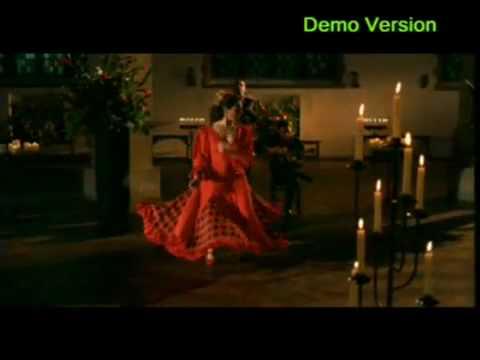 Flamenco Fuego
