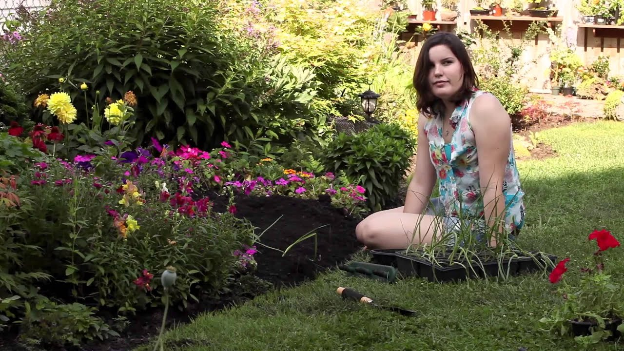 Superbe Summer Gardening Made Easy With The Tazzy!