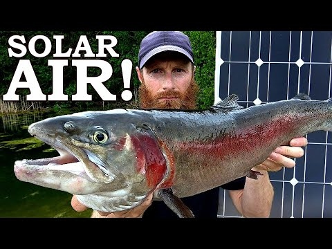 SOLAR AIR PUMP For The FISH POND (Amazing)! | RIP Clark Spent :{