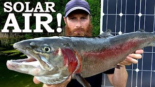 SOLAR AIR PUMP For The FISH POND (Amazing)! | RIP Clark Spent :{