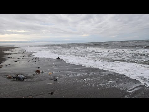 Metal Detecting on the Beach in Alaska!