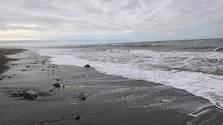 Metal Detecting on the Beach in Alaska! | Nugget Noggin