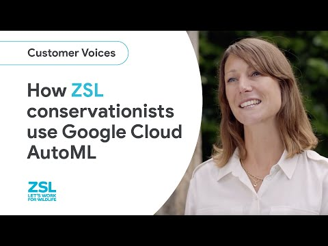 Advancing conservation with AutoML