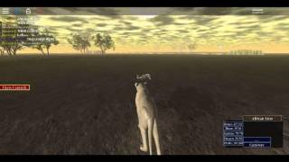 Roblox-Wild Savannah (W.I.P)-Lion hunting buffs and more!