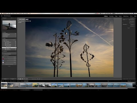 Lightroom Quick Tips - Episode 75: Moving the Catalog & Library