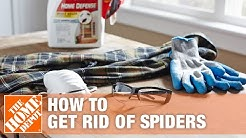 How to Get Rid of Spiders in Your House | The Home Depot