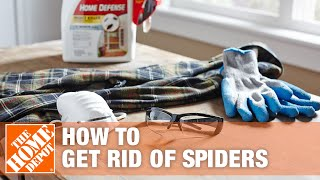 How To Get Rid Of Spiders In Your House   The Home Depot