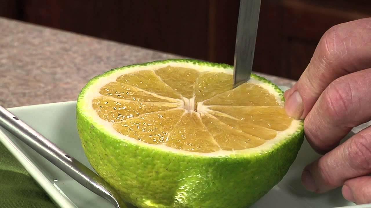 ugly fruit exotic fruit