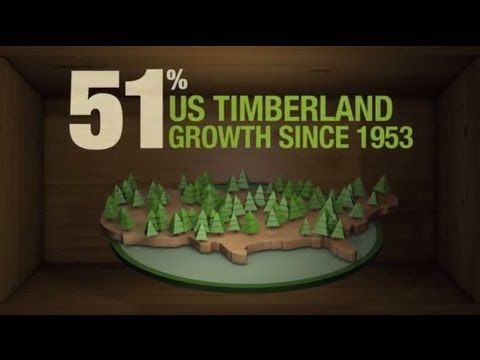 Think Wood - A Renewable and Green Building Choice