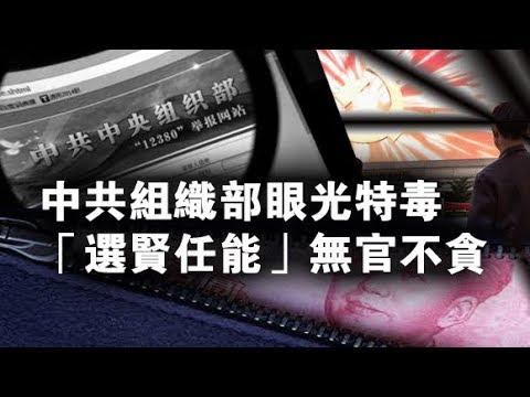 """张杰:中共组织部眼光特毒 """"选贤任能""""无官不贪"""